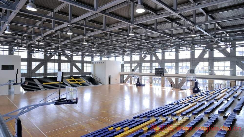 有几个大跨度空间结构系统的目的,创新设计的关键这一特定的体育馆