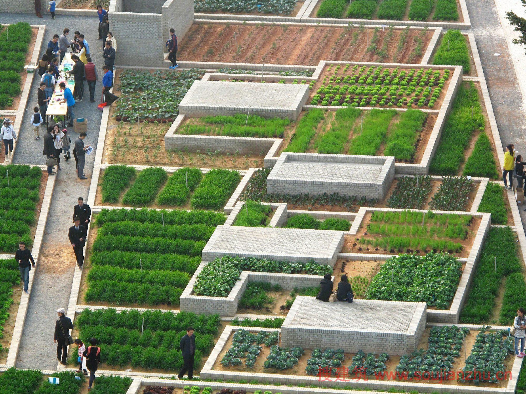 农场景观设计效果图