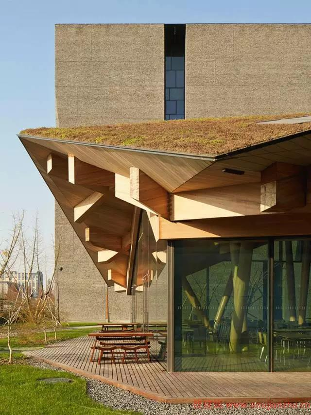 """整个设计以""""绿色肺""""为设计理念,用木结构的模块化设计与绿色植物相"""